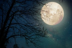 Milky Way star in night skies, full moon and old tree - Retro style artwork with vintage color tone (Elements of this moon image furnished by NASA)