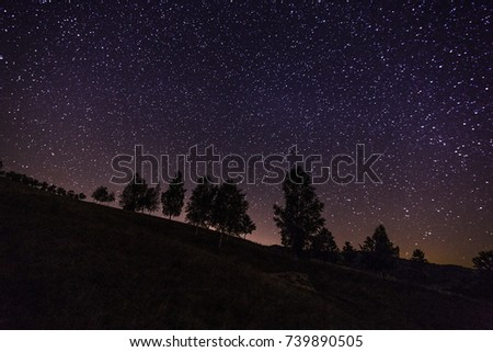 Shutterstock milky way - trees in the night- nocturnal view - magic night