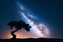 Milky Way with alone old crooked tree on the hill. Colorful night landscape with bright milky way, starry sky and tree in summer. Space background. Amazing astrophotography. Beautiful universe. Travel