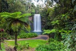 Millaa Millaa Falls in the Atherton Tablelands in North Queensland, Australia