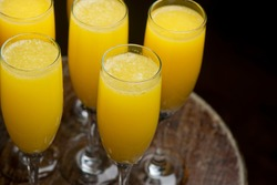 Mimosa Cocktail. Champagne cocktail made with champagne, chilled orange juice, severed in a flute and garnished with orange slices. Traditional drink served at brunch, breakfast and weddings.