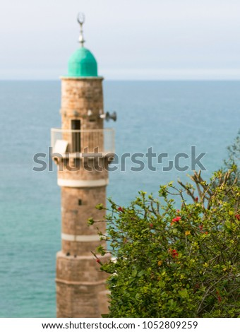 Minaret of an ancient mosque on the background of the blue sea and bush with flowers #1052809259