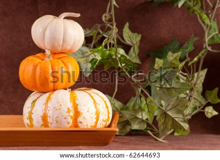 Mini Pumkin Stacked On Top of Each Other