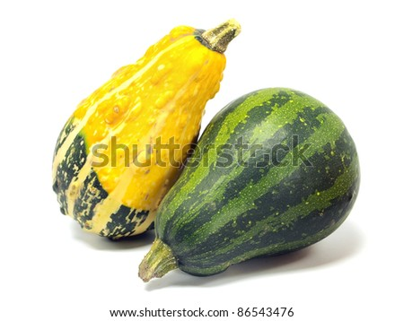 Mini pumpkin on a white background