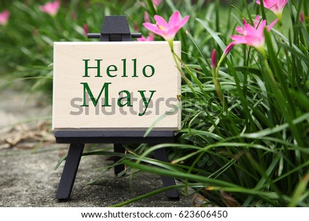 mini wooden board with text hello may in a garden with flower blossom #623606450