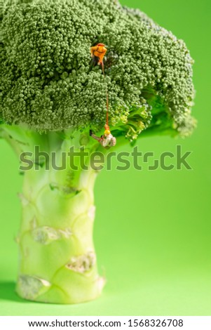 Miniature climber is lifting up another climber on a broccoli where the workout and train for endurance and health
