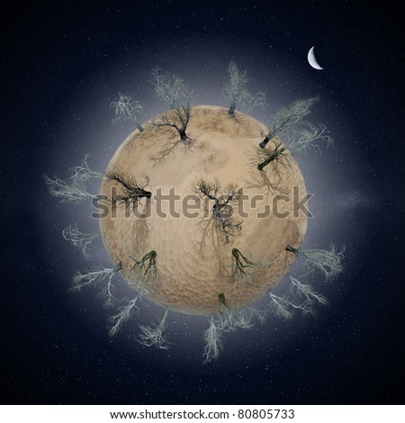 Miniature desert planet with leafless dry trees, night-time