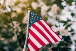 Miniature flag of America on the background of a flowering tree. Politics, learning a foreign language. July 4. Memorial Day.