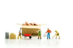 Miniature people, gardener in action and coins in paper box on white background, using as agriculture concept
