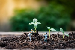 Miniature people : Nature exploration team is planting trees for a green world project. (We plant trees for a better world)