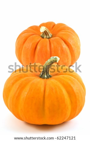 Miniature pumpkins on white background with copy space, vertical format