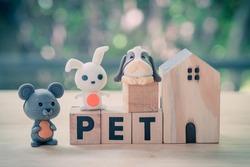 Miniature rabbit, dog and rat on wood block word of
