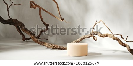 Minimal abstract background for product presentation. Dry twigs  with tree shadow on white plaster wall. 3d render illustration. Clipping path of each element included.