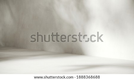 Minimal abstract background for product presentation. Sunshade shadow on white plaster wall. 3d render illustration. Clipping path of each element included.