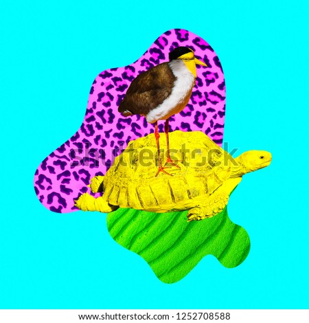 Minimal Contemporary collage art. Tropical animal vibes. Turtle and bird friendship #1252708588