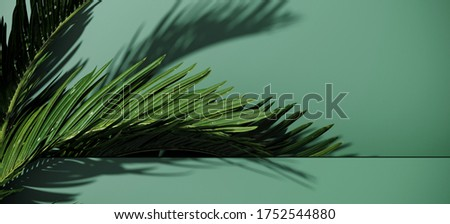 Minimal cosmetic background for product presentation. Green podium and palm with shadow of leaf. 3d render illustration. Object isolate clipping path included. stock photo