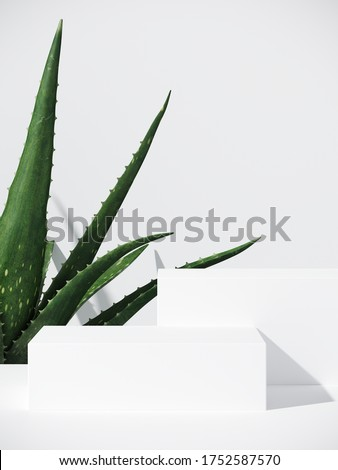 Minimal cosmetic background for product presentation. White podium and aloe vera plant with shadow of leaf. 3d render illustration.