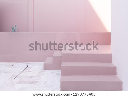 Minimal empty space scene with pink painted wall and little step and artificial cactus for photoshoot in natural light scene / studio concept / rose pink theme / outdoor studio / modern minimal style