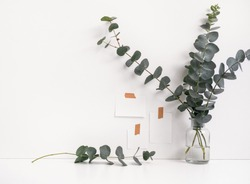Minimal interior photo. White desk sticker notes on the wall, flowers and eucalyptus branches. Front view, feminine workspace, copy space for text
