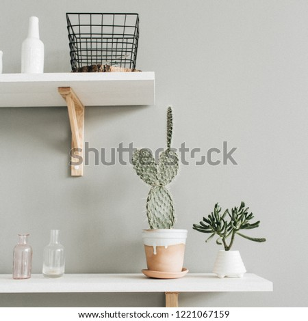 Minimal modern interior design. Cactus in flowerpot at pastel wall. #1221067159