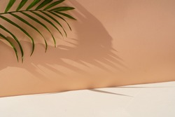 Minimal modern product display on textured beige background with palm shadows overlay