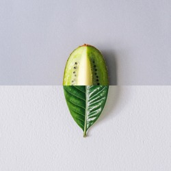 Minimal nature concept with green leaf and kiwi slice. Summer fruit background. Flat lay social mockup with copy space.