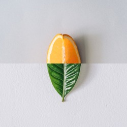 Minimal nature concept with green leaf and orange slice. Summer fruit background. Flat lay social mockup with copy space.