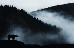 minimal wilderness landscape with bear silhouette and misty mountains