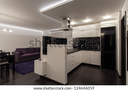 Minimalist apartment - kitchen connected with living room