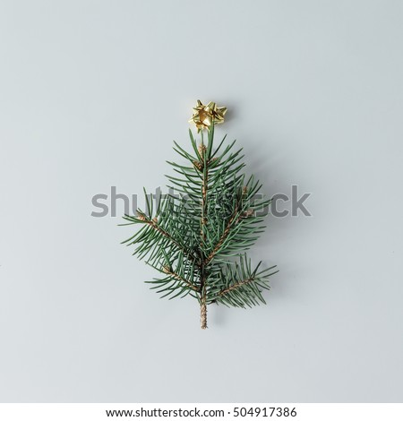Minimalistic Christmas tree made of evergreen plant on white background.  New Year concept. Flat lay.
