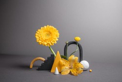 Minimalistic composition with geometric objects and flowers. Balancing flowers with varied shapes. Modern abstract botanical background. Trendy colors of 2021 year - gray and yellow.