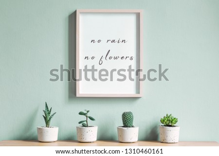 Minimalistic home interior with mock up photo frame on the brown wooden table with composition of cacti and succulents in stylish cement pots. Mint walls. Stylish and floral concept of home garden.