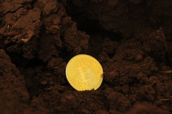 Mining golden bitcoin in soil