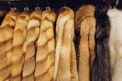 Mink coats of different colors in a shop on a hanger.
