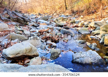 Minnehaha Stream - Bethesda, Maryland