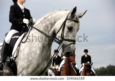 MINSK, BELARUS - MAY 27: Unidentified girls (School of Olympic Reserve) participating in show of equestrian dressage during KAP JUMPING HORSE SHOW 2012 on May 27, 2012 in Minsk, Belarus.