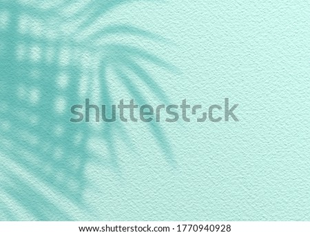 Mint Blue cement texture wall leaf plant shadow background.Summer tropical travel beach with minimal concept. Flat lay pastel color palm nature.