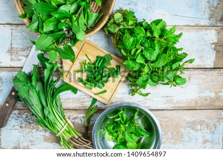 Mint herbs and Culantro herbs for health #1409654897
