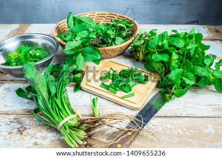 Mint herbs and Culantro herbs for health #1409655236