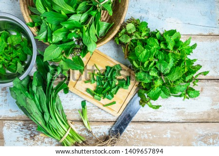 Mint herbs and Culantro herbs for health #1409657894