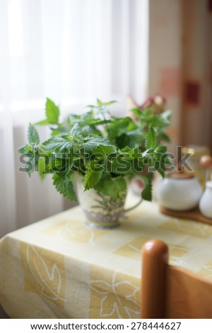 Mint in a circle on the table