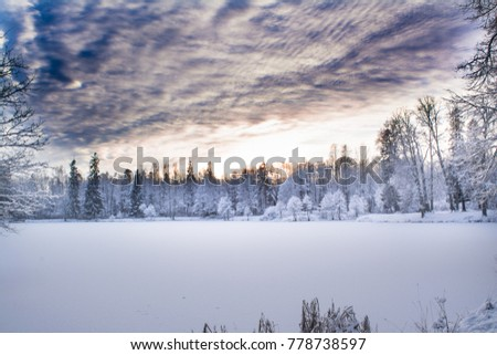 Miracle winter forest covered by snow. Beautiful frozen trees and mysterious sky. Frozen lake. Evening after sunset. Saint-Petersburg. #778738597
