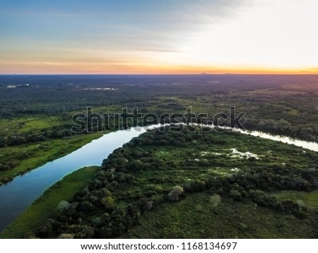 Miranda River photographed in Corumba, Mato Grosso do Sul. Pantanal Biome. Picture made in 2017. #1168134697