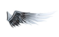 Mirror beautiful angel wing concept isolated on white background with clipping path . Freedom symbol