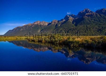 Mirror Lakes along the way to Milford Sound, New Zealand #660701971