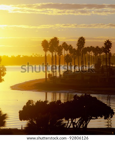 Mission Bay Sunset and Palm Trees. San Diego, California. USA
