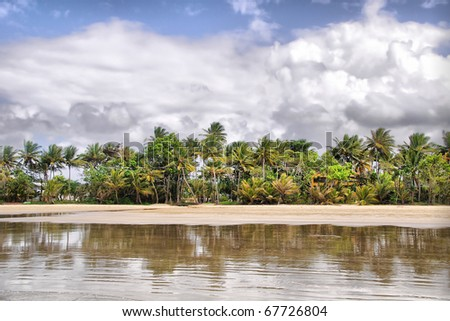 Mission Beach in Tropical Queensland, south of Cairns, Australia