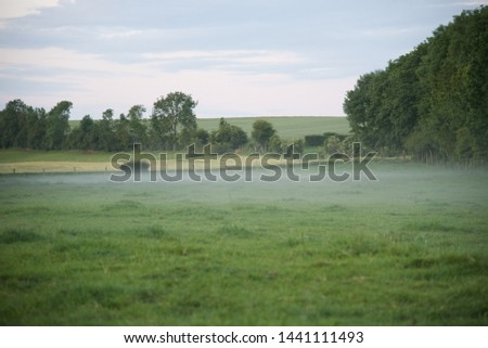 Mist: a low mist hangs over a field in the early evening of a June day in northern France #1441111493
