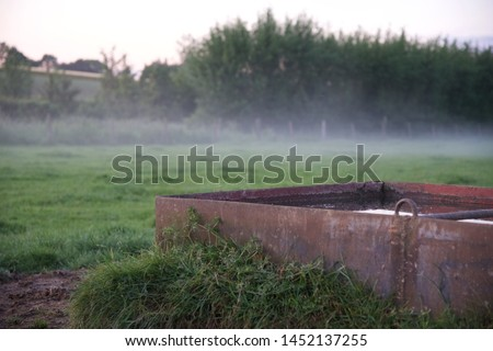 Mist: a low mist hangs over a field with a water trough in the early evening of a June day in northern France #1452137255