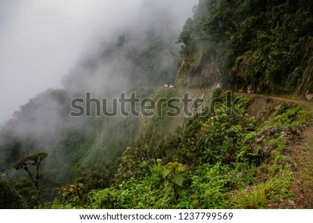 Mist and mist cover the road of the Yungas in the Bolivian jungle #1237799569